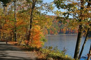 The paved, multi-use Old Abe Trail runs along the Chippewa River.