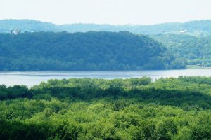 Mississippi River Property for Sale!