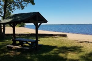 Adams County WI Wooded Camp or Cabin Site & 23,000 Acre All Sports Lake!