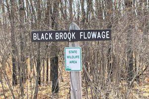 Northwest WI 9.8 Acres Wooded Land and Yellow Lake!