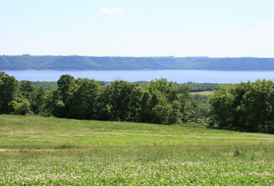 5 Acres of Land with 180 Degree Views of Lake Pepin!