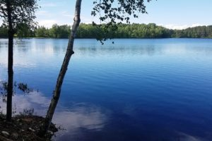 Northwoods WI, 126' Lakefront, 1.4 Wooded Acres of Land!