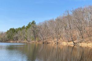 Northwest WI, 23 Acres, 500' Lakefront, Woods & Wildlife!