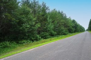 Northern Wisconsin 5 Acres, Woods, Near Yellow Lake!