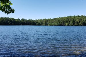 Rhinelander, Wisconsin Area Wooded Lakefront!
